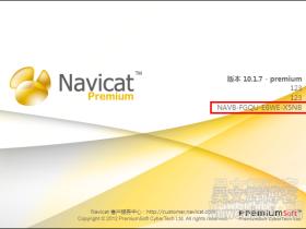 Navicat_Premium_10.1.7安装包+注册机